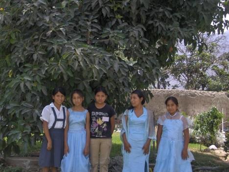 conf-2008-025